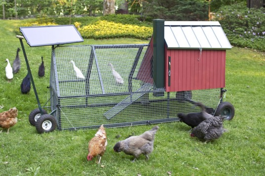 mobile-chicken-coop