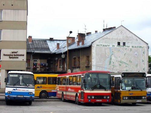 NS buses