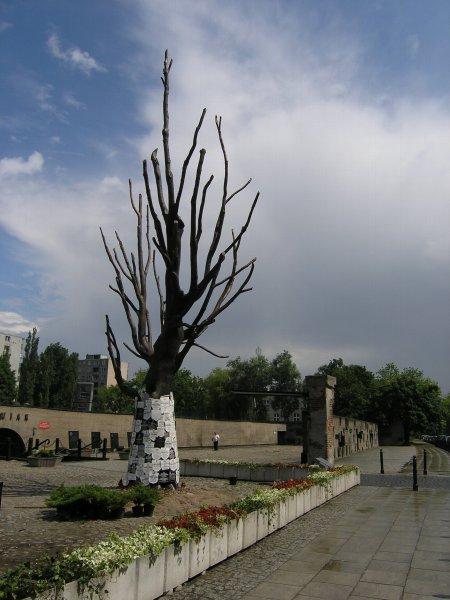Pawiak_drzewo