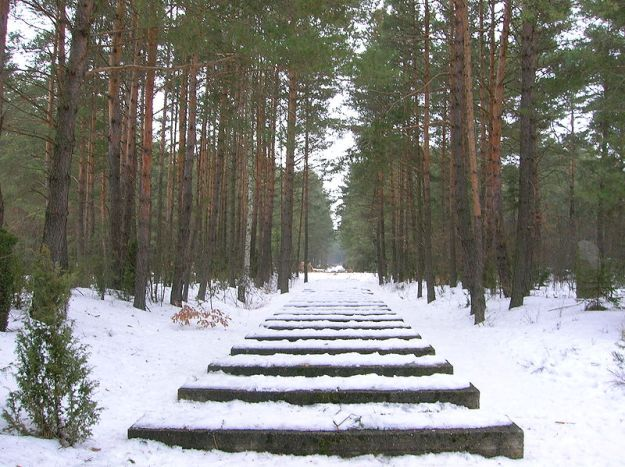 Treblinka_-_Rail_tracks
