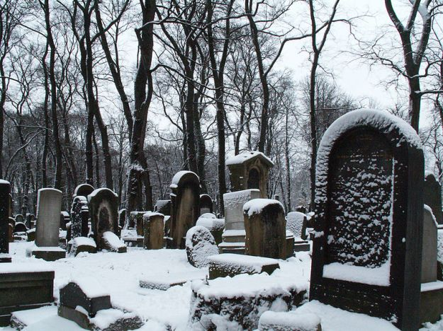 800px-New_Jewish_cemetery,_55_Miodowa_street,Kazimierz,Krakow,Poland_