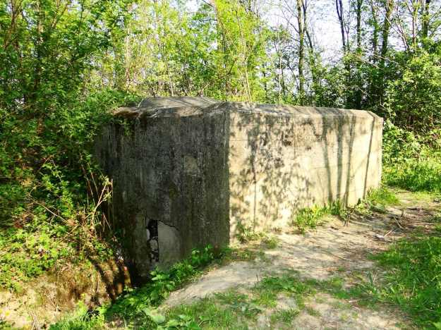 Bunker_in_Czchów,_near_Czchów_Castle