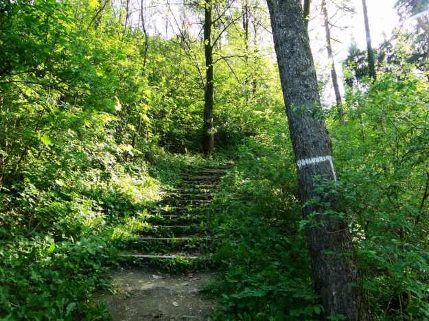 Czchów_Castle path