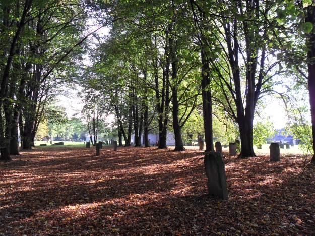 Jewish_Cemetery_in_Nowy_Sącz_02