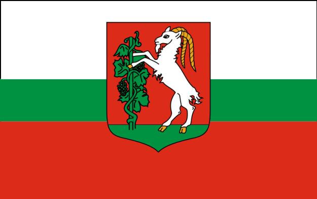 Lublin_flag