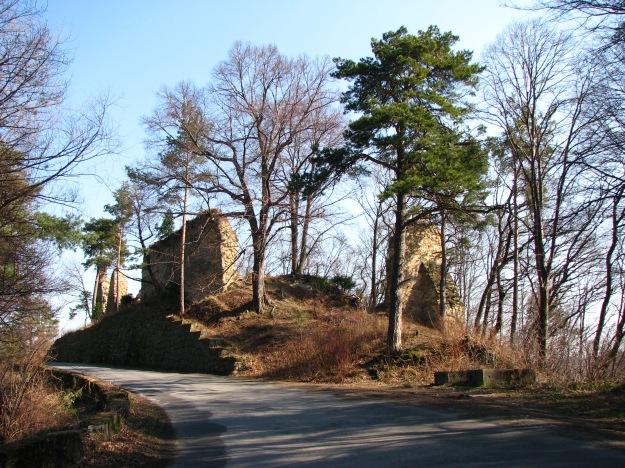 POL_Roznow_ruiny_zamku_Rozena