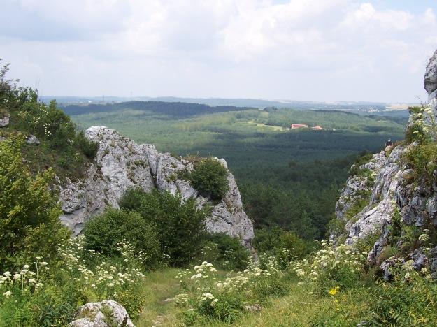 Góra_Zborów6